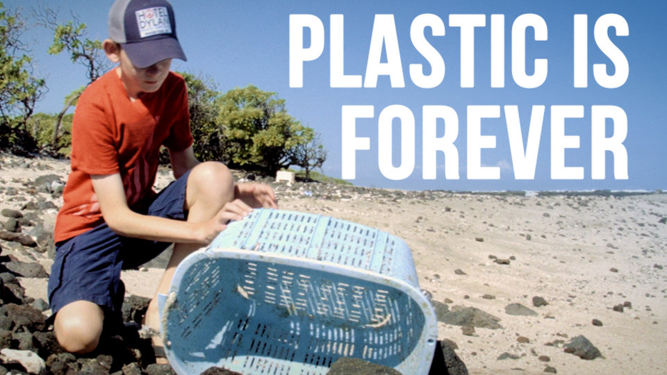 Plastic Is Forever